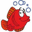 102063 - fish