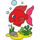 102064 - fish