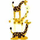 Giraffes-2590 - Copy