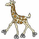 Giraffes-2975