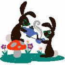 rabbits-bunn-102422