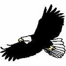 Eagles-101811