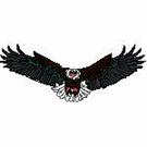 Eagles-101817