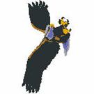 Eagles-101818
