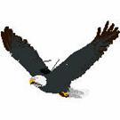 Eagles-101819