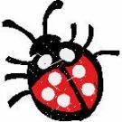 101257 bug